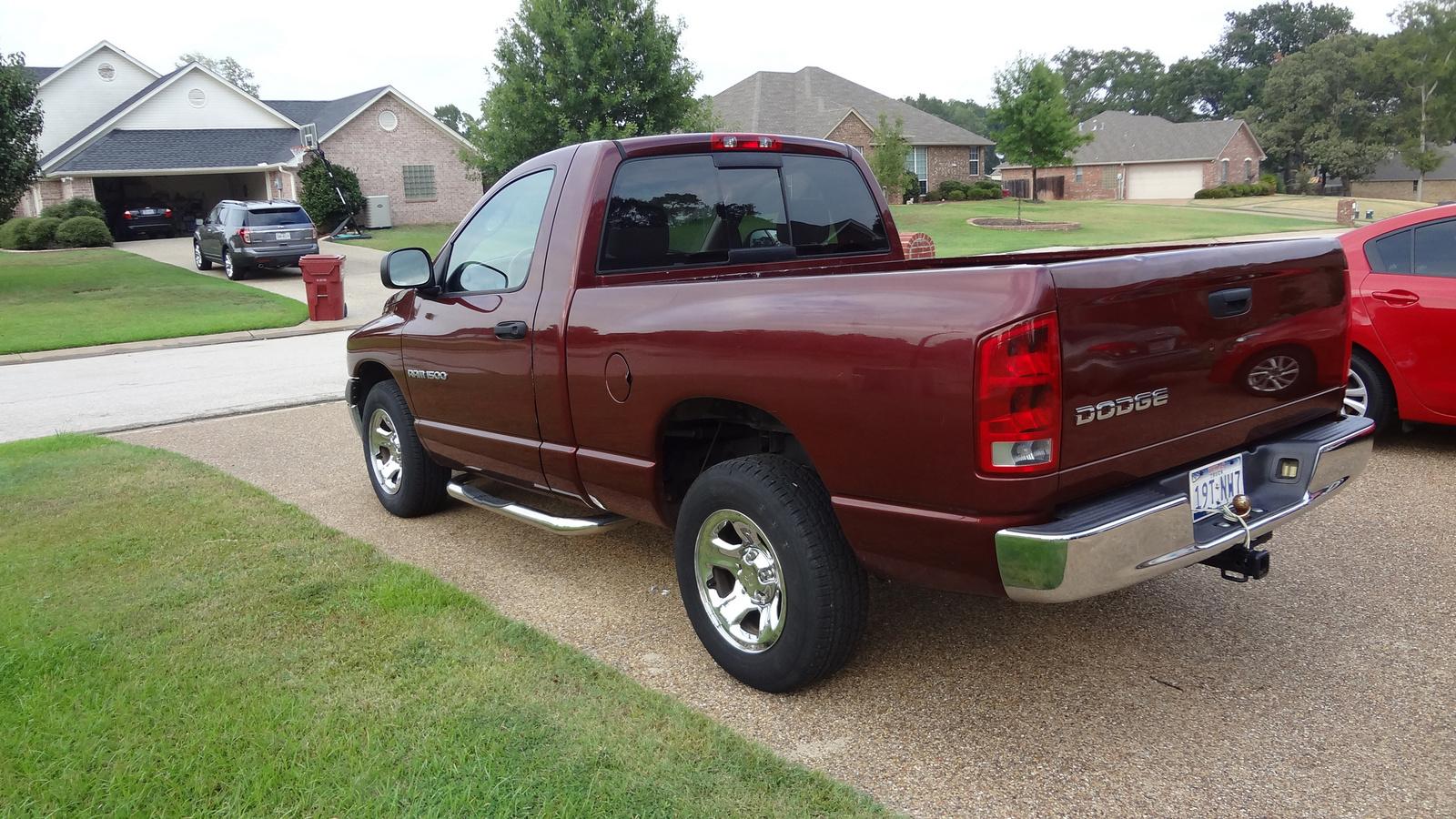 2002 dodge ram pickup 1500 trim information cargurus. Black Bedroom Furniture Sets. Home Design Ideas