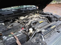 Picture of 2000 Land Rover Range Rover 4.6 HSE, engine, gallery_worthy