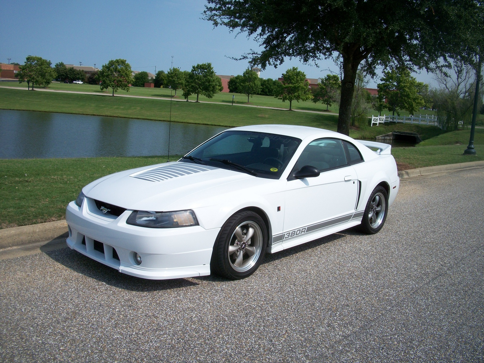 2001 ford mustang gt related infomation specifications. Black Bedroom Furniture Sets. Home Design Ideas