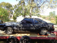 Picture of 1983 Ford Mustang GT, exterior, gallery_worthy
