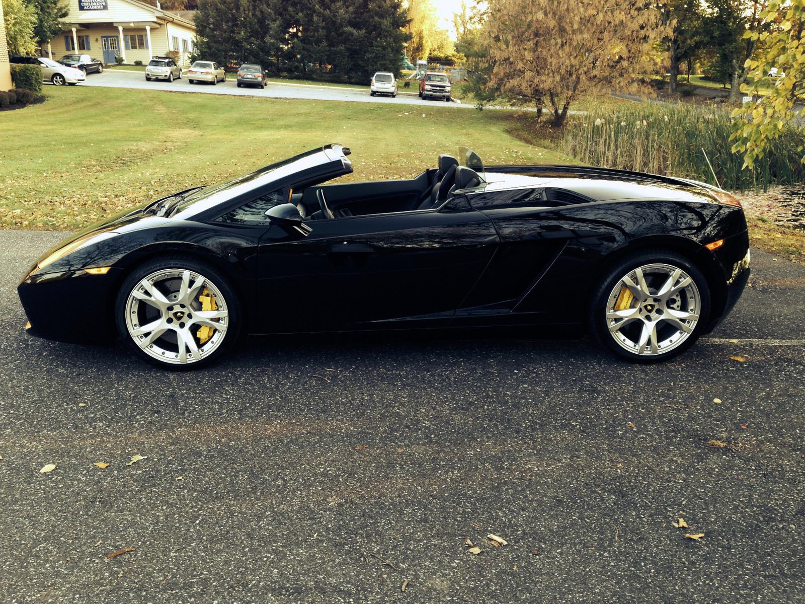 2008 Lamborghini Gallardo Pictures Cargurus