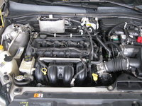 Picture of 2008 Ford Focus SES, engine