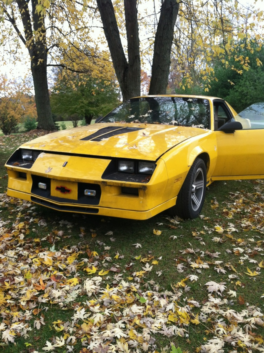 chevrolet camaro questions i have a 1983 z28 camaro how much should i list it for cargurus. Black Bedroom Furniture Sets. Home Design Ideas