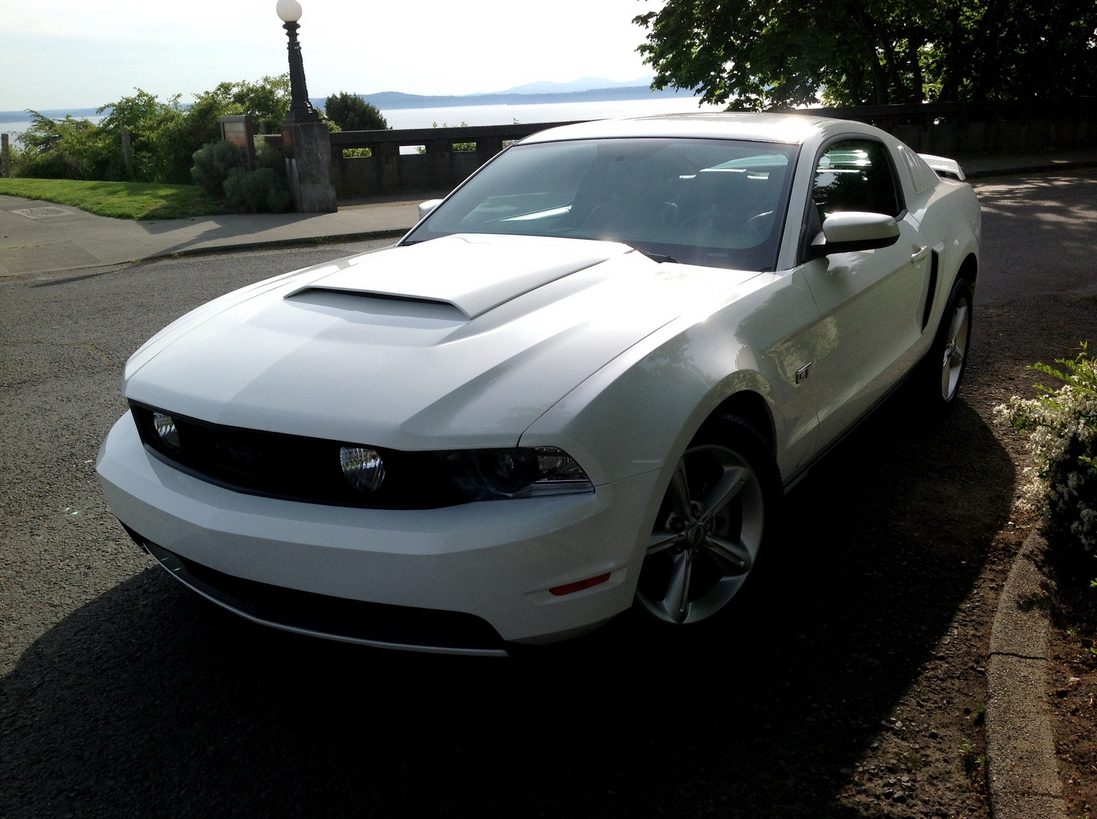 2010 ford mustang gt premium for sale cargurus. Black Bedroom Furniture Sets. Home Design Ideas