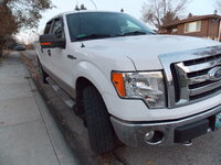Picture of 2009 Ford F-150 XLT SuperCrew LB 4WD, exterior