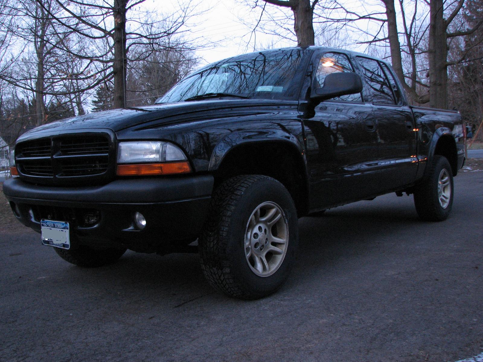 2003 Dodge Dakota Pictures Cargurus