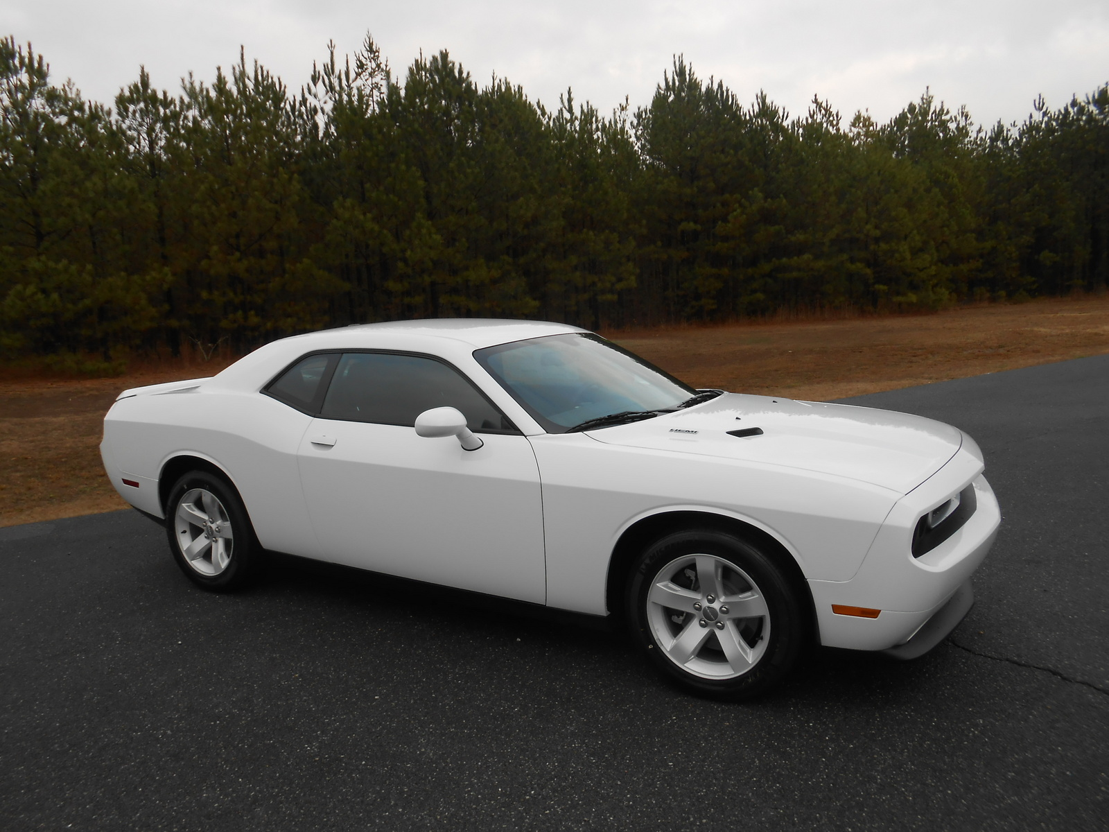 picture of 2014 dodge challenger r t exterior. Cars Review. Best American Auto & Cars Review