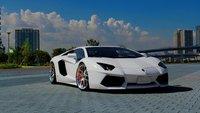 2014 Lamborghini Aventador Roadster picture