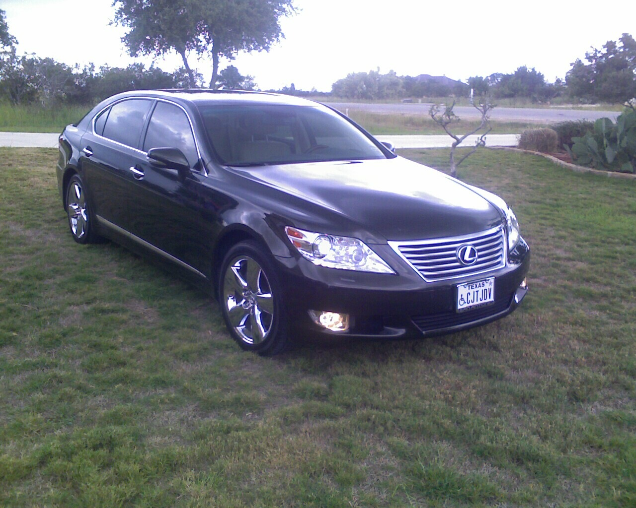 2010 lexus ls 460 pictures cargurus. Black Bedroom Furniture Sets. Home Design Ideas