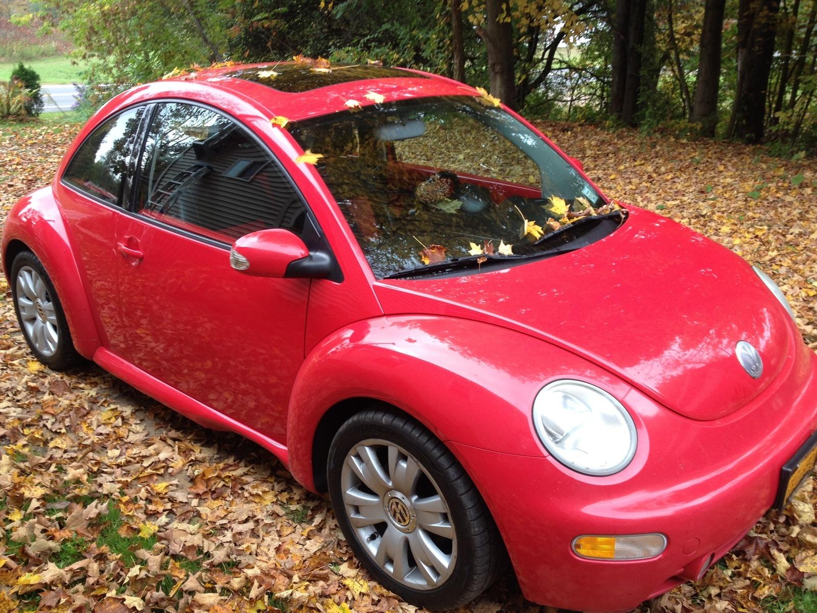 volkswagen beetle questions how do i find the actual. Black Bedroom Furniture Sets. Home Design Ideas