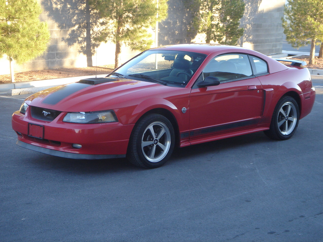 used 2004 ford mustang mach 1 specs. Black Bedroom Furniture Sets. Home Design Ideas