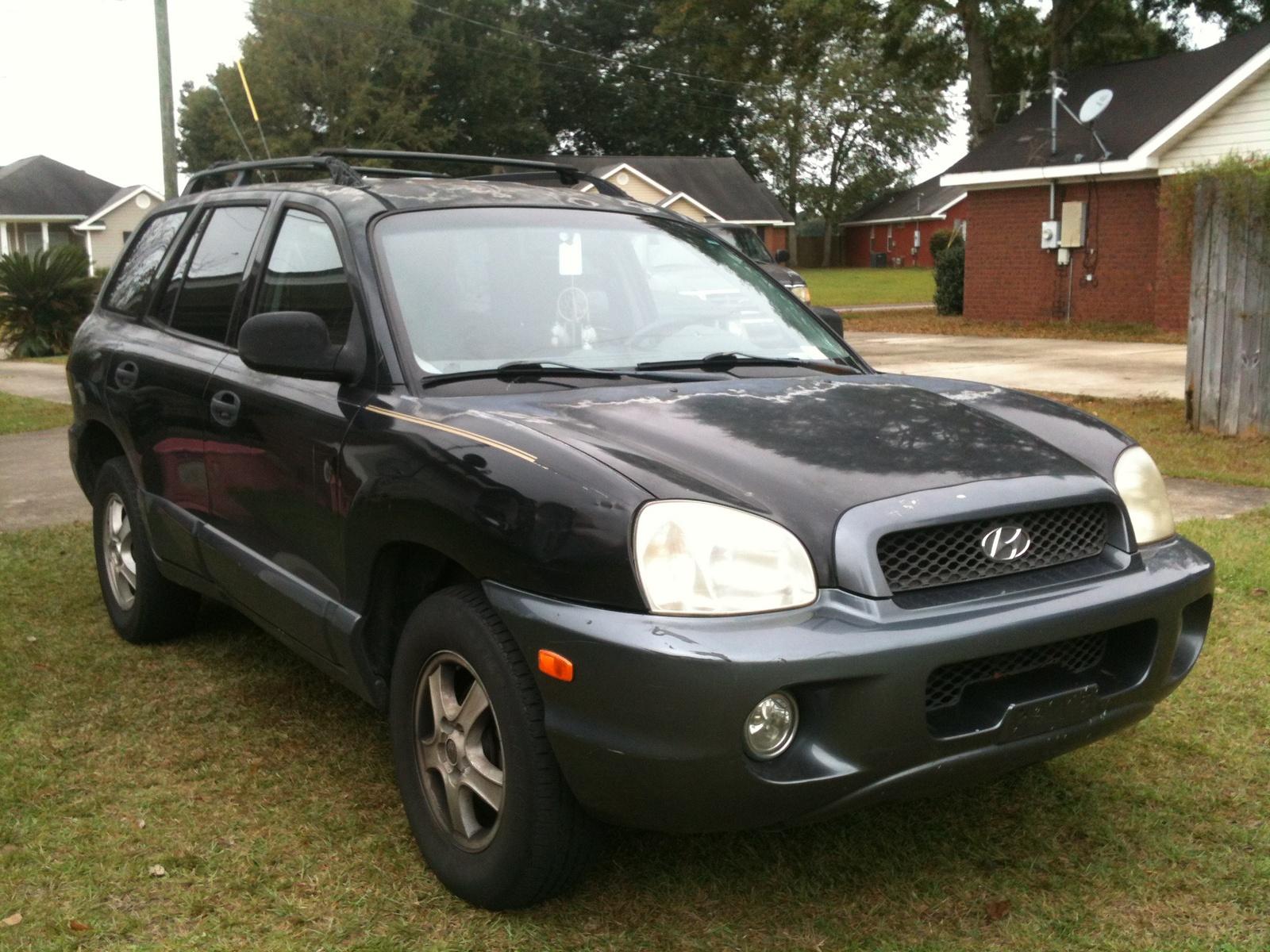 2001 Hyundai Santa Fe Pictures Cargurus