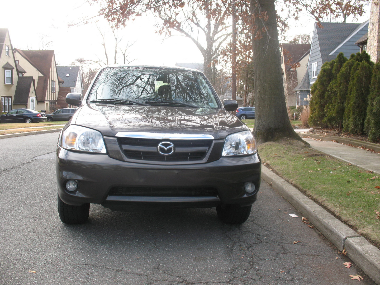 2006 mazda tribute exterior pictures cargurus. Black Bedroom Furniture Sets. Home Design Ideas