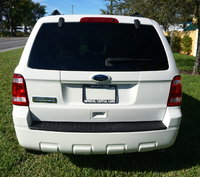 Picture of 2010 Ford Escape XLT FWD, exterior, gallery_worthy