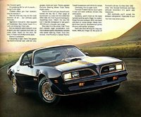 1977 Pontiac Firebird Overview