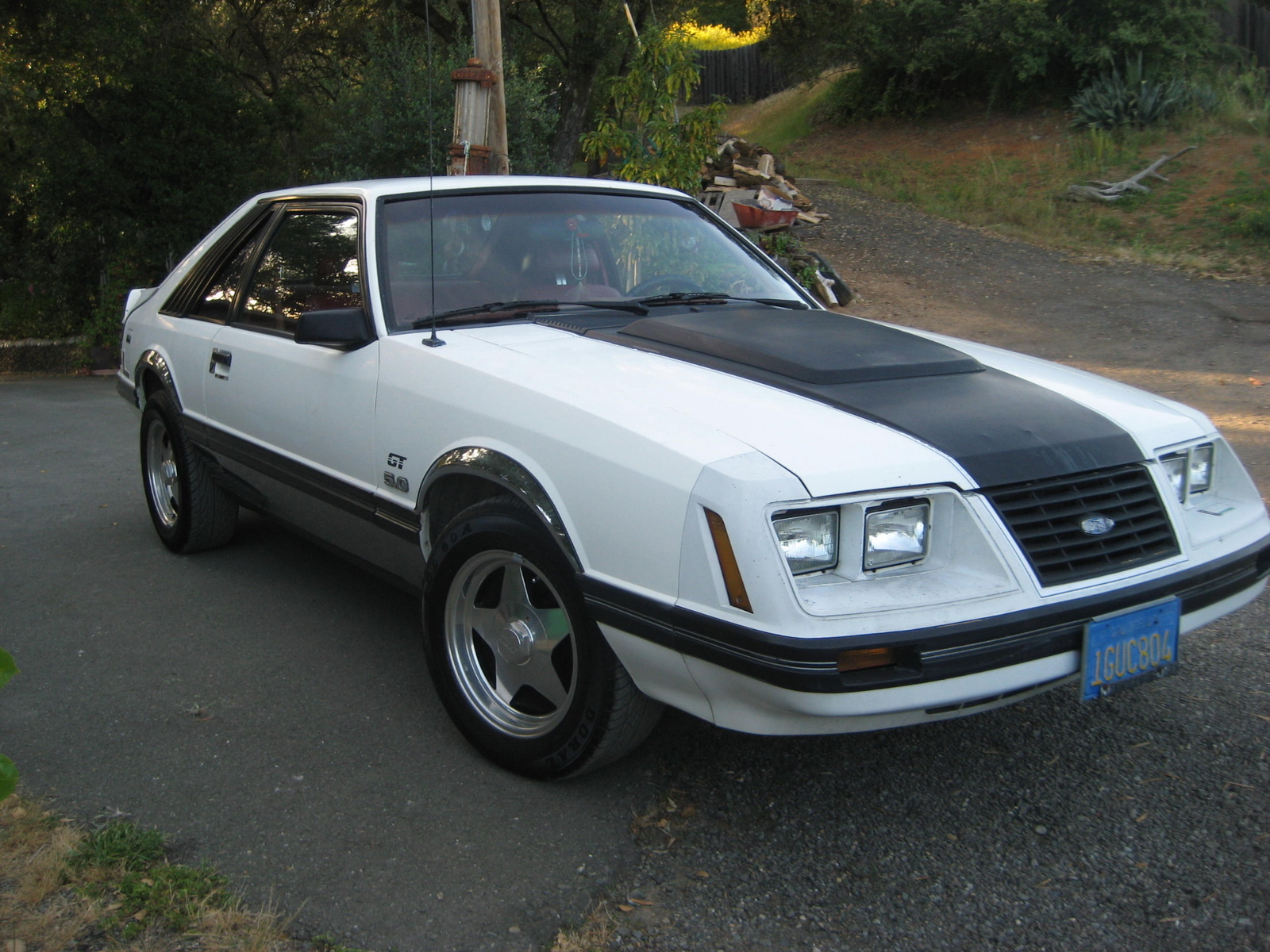1983 Ford Mustang Convertible  Review  Car and Driver