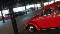 1970 Volkswagen Beetle Picture Gallery