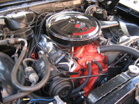 Picture of 1967 Chevrolet Chevelle, engine, gallery_worthy
