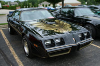 1981 Pontiac Trans Am Overview