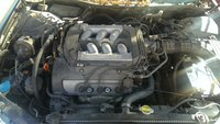 Picture of 1998 Honda Accord LX, engine, gallery_worthy