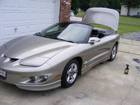 Picture of 2002 Pontiac Firebird Convertible, exterior