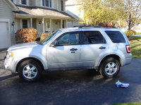 Picture of 2010 Ford Escape XLT AWD, exterior, gallery_worthy