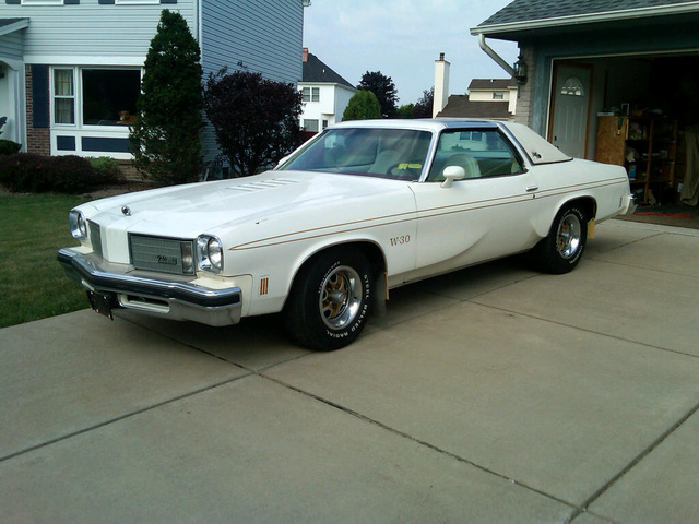 1975 oldsmobile cutlass pictures cargurus for 1975 oldsmobile cutlass salon for sale