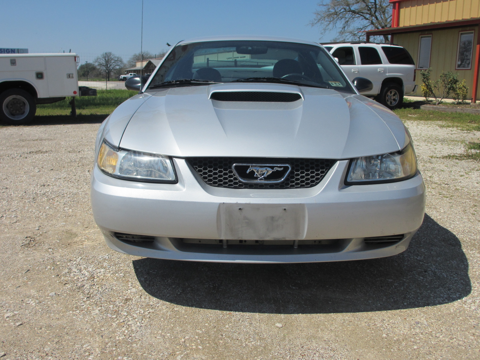 1998 mustang gt horsepower and torque relationship