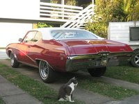 1969 Buick Skylark, Just got it home. Mr S, our much missed cat had to join in., exterior