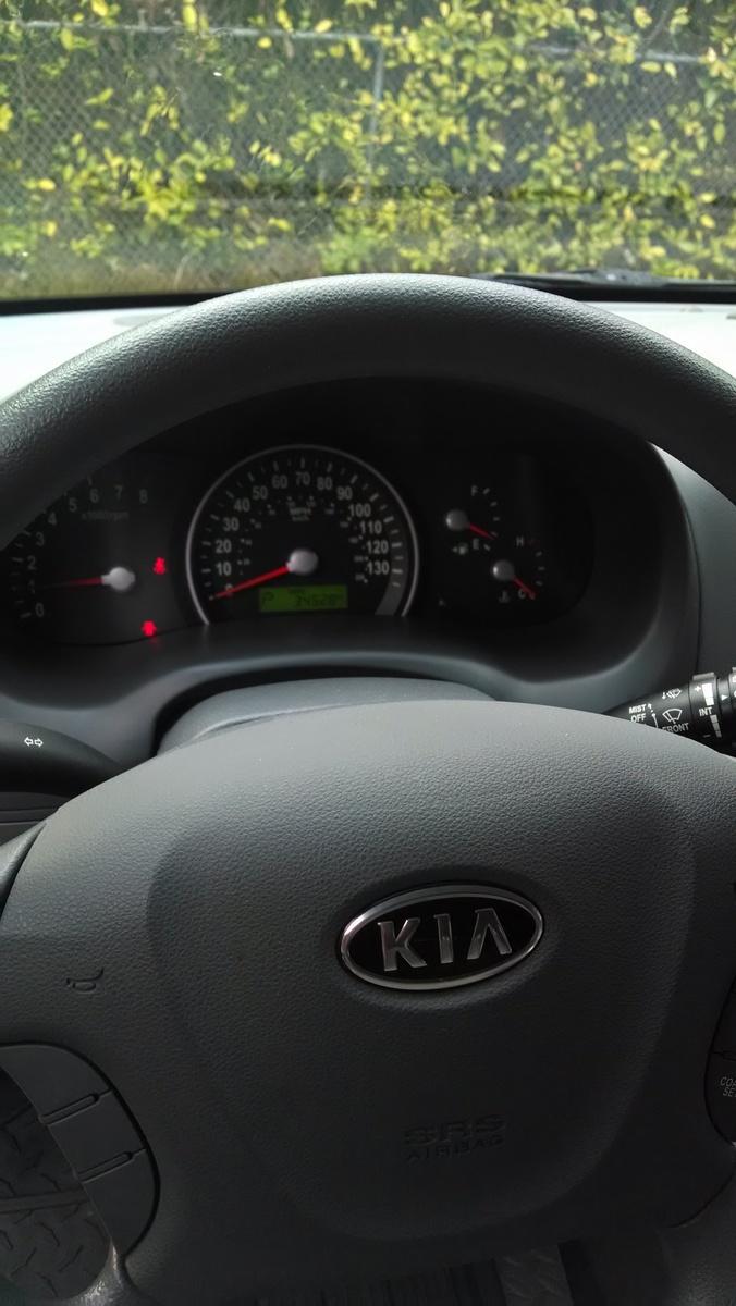 2009 Kia Sedona