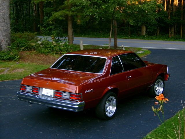 1980 chevrolet malibu pictures cargurus. Black Bedroom Furniture Sets. Home Design Ideas