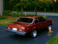 1980 Chevrolet Malibu picture, exterior