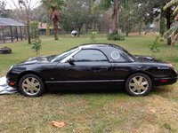 Picture of 2003 Ford Thunderbird Premium Convertible, exterior