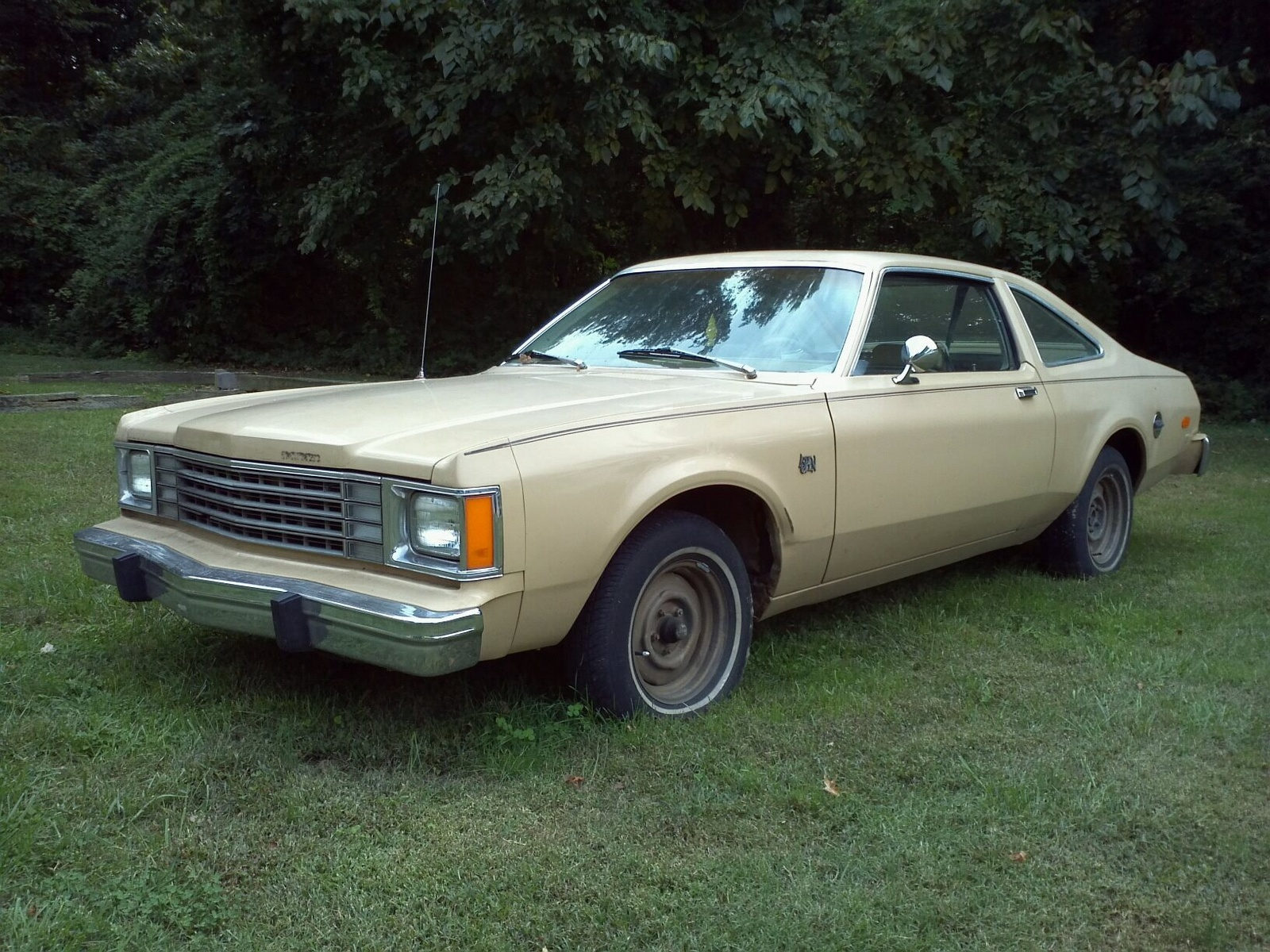 1979 Dodge Aspen Overview Cargurus