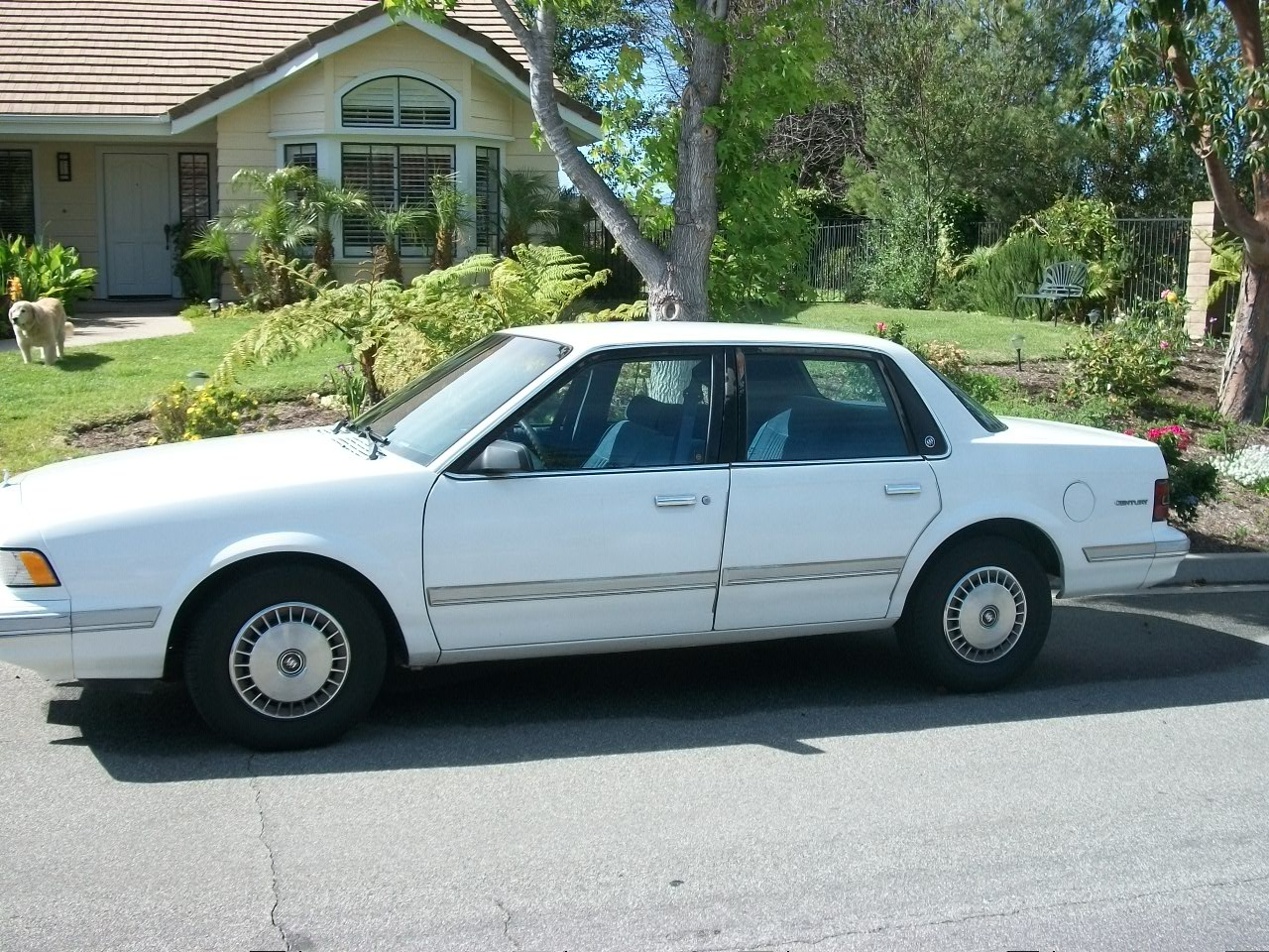 picture of 1993 buick century special exterior. Black Bedroom Furniture Sets. Home Design Ideas