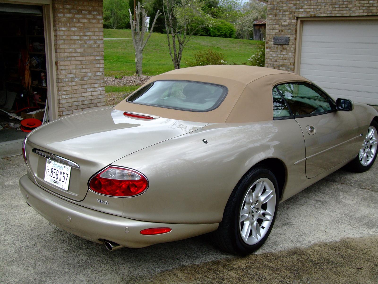 2002 Jaguar Xk Series Pictures Cargurus