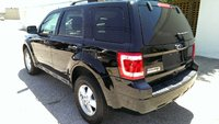 Picture of 2010 Ford Escape XLT, exterior