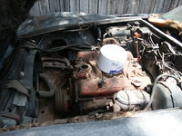 Picture of 1975 Chevrolet Corvette Coupe, engine, gallery_worthy