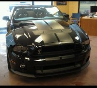 Picture of 2014 Ford Shelby GT500 Convertible, exterior