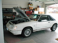 Picture of 1984 Ford Mustang GT350, engine, exterior
