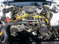 Picture of 1984 Ford Mustang GT350, engine