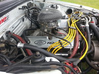 Picture of 1984 Ford Mustang GT350, engine, gallery_worthy