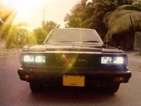 Picture of 1984 Nissan Maxima, exterior