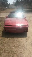 Picture of 1990 Pontiac Firebird Base, exterior