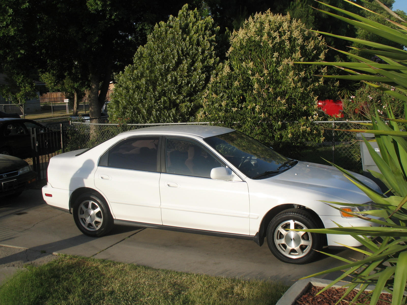 Picture of 1996 Honda Accord LX, exterior