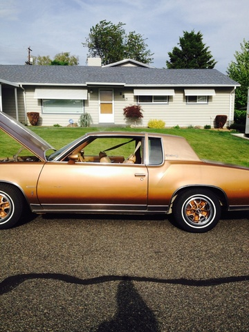 Picture of 1980 Oldsmobile Cutlass
