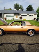 1980 Oldsmobile Cutlass Picture Gallery