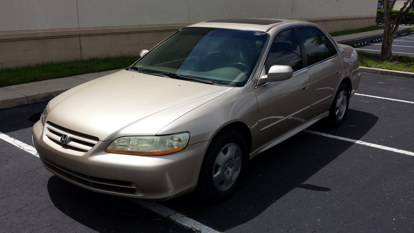 honda accord showed a newer sleeker look for 2001 with