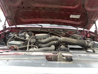 Picture of 1996 Ford Bronco Eddie Bauer 4WD, engine, gallery_worthy