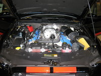 Picture of 2014 Ford Shelby GT500 Coupe, engine